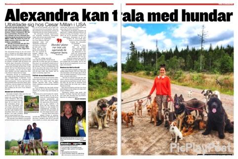 Kvällsposten, torsdag 13/8 2015.