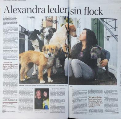 Göteborgs Posten, fredagen den 23 maj 2014