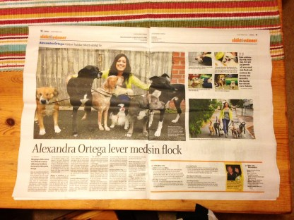 Ulricehamns Tidning, lördag 14/9 2013.