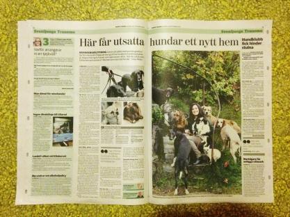 Borås Tidning, lördag 28/9 2013.