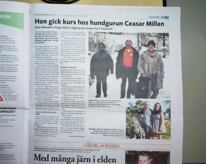 Svenljunga Tranemo Tidning, torsdag 28/2 2013.