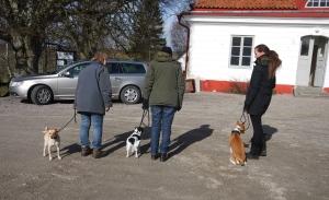 Hundägare som lär sig av varandras erfarenheter och upplevelser.