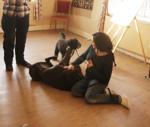 Vi ser hundar som hjälper andra hundar mot balans...