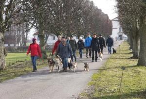 Flockpromenaden är en viktig del utav kursen.