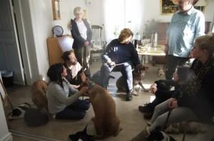 """Det var nästan lite """"hemma hos""""-känsla i Göteborg, lite som att vara på läger med andra hundentusiaster :)"""